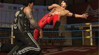 Cкриншот Lucha Libre AAA: Héroes del Ring, изображение № 536147 - RAWG