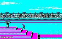 Cкриншот Summer Games 2, изображение № 345163 - RAWG