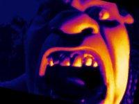 """Cкриншот Shrek's Maze """"UPDATED"""", изображение № 2247858 - RAWG"""