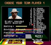 Super International Cricket screenshot, image №762854 - RAWG