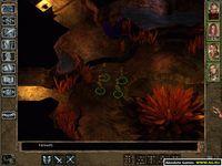 Cкриншот Baldur's Gate 2: Тени Амна, изображение № 308295 - RAWG