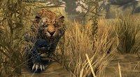 Cкриншот Cabela's Dangerous Hunts 2011, изображение № 560518 - RAWG