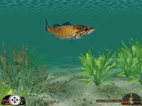 Cкриншот In-Fisherman Freshwater Trophies, изображение № 407308 - RAWG