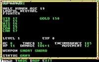 Cкриншот Neverwinter Nights (1991), изображение № 468735 - RAWG