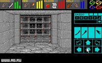 Dungeon Master screenshot, image №289200 - RAWG