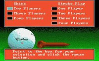 Cкриншот Jack Nicklaus' Greatest 18 Holes of Major Championship Golf, изображение № 736258 - RAWG