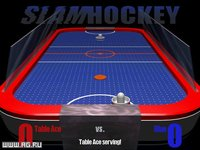 Cкриншот 3-D Table Sports, изображение № 339384 - RAWG