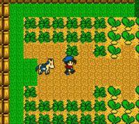 Cкриншот Harvest Moon, изображение № 806519 - RAWG