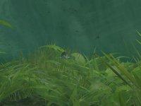 Cкриншот Rapala Pro Fishing, изображение № 410196 - RAWG