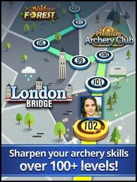 Cкриншот Archery King, изображение № 879389 - RAWG