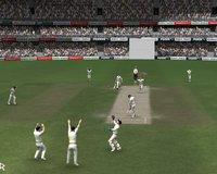 Cкриншот Cricket 07, изображение № 465365 - RAWG