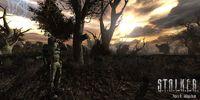 Cкриншот S.T.A.L.K.E.R.: Lost Alpha, изображение № 618042 - RAWG