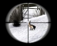 Cкриншот Профессия: охотник, изображение № 485785 - RAWG