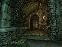 Cкриншот The Elder Scrolls IV: Oblivion, изображение № 699224 - RAWG