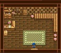 Cкриншот Harvest Moon, изображение № 761775 - RAWG