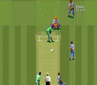 Super International Cricket screenshot, image №762856 - RAWG