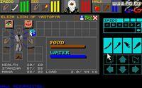 Dungeon Master screenshot, image №289205 - RAWG