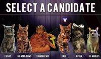 Cкриншот Cat President ~A More Purrfect Union~, изображение № 152360 - RAWG