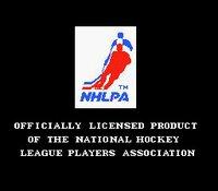 Cкриншот Pro Sport Hockey, изображение № 737304 - RAWG