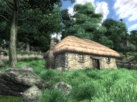 Cкриншот The Elder Scrolls IV: Oblivion, изображение № 699222 - RAWG