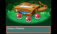 Cкриншот Pokémon Alpha Sapphire, Omega Ruby, изображение № 243018 - RAWG