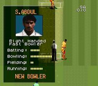 Super International Cricket screenshot, image №762855 - RAWG
