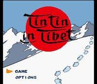 Tintin in Tibet (1995) screenshot, image №743307 - RAWG
