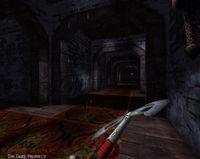 Cкриншот Vampire Hunter: The Dark Prophecy, изображение № 359196 - RAWG