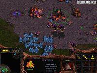Cкриншот StarCraft, изображение № 331817 - RAWG