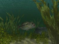 Reel Fishing (1996) screenshot, image №742213 - RAWG