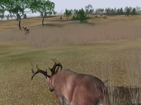 Cкриншот Deer Hunter 2004, изображение № 356749 - RAWG