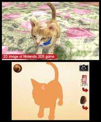 nintendogs + cats: Golden Retriever & New Friends screenshot, image №259724 - RAWG