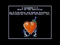 Cкриншот Wizardry V: Heart of the Maelstrom, изображение № 758118 - RAWG
