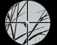 Cкриншот Профессия: охотник, изображение № 485788 - RAWG