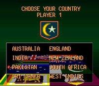 Super International Cricket screenshot, image №762853 - RAWG