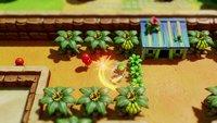 The Legend of Zelda: Link's Awakening screenshot, image №1837492 - RAWG