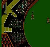 International Cricket screenshot, image №736187 - RAWG