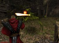 Cкриншот Готика 2: Ночь Ворона, изображение № 371183 - RAWG