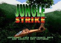 Cкриншот Jungle Strike, изображение № 746511 - RAWG
