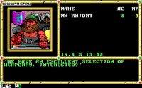 Cкриншот Neverwinter Nights (1991), изображение № 468738 - RAWG