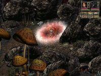 Cкриншот Beyond Divinity: Оковы судьбы, изображение № 219541 - RAWG