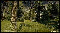 Cкриншот Dragon Age: Инквизиция, изображение № 598746 - RAWG