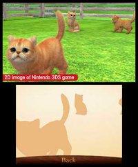 nintendogs + cats: Golden Retriever & New Friends screenshot, image №259718 - RAWG