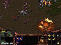 Cкриншот StarCraft, изображение № 331811 - RAWG