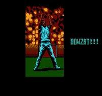 International Cricket screenshot, image №736190 - RAWG