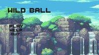Cкриншот Wild Ball, изображение № 2465883 - RAWG