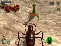 Ant Simulation 3D screenshot, image №2174325 - RAWG