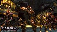 Cкриншот Blood Bowl: Легендарное издание, изображение № 96474 - RAWG