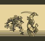 Cкриншот Ninja Gaiden Shadow, изображение № 751714 - RAWG
