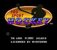 Cкриншот Pro Sport Hockey, изображение № 737306 - RAWG